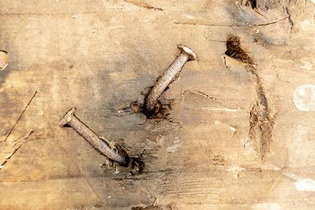 vieux clou rouillé regarde hors d'une vieille poutre en bois