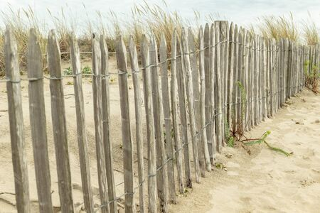 Dunes fortification on the Atlantic with coarse wooden fence