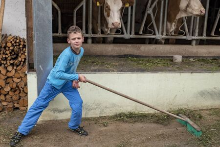 Boy dressed in blue sweeping the floor in front of a cowshed