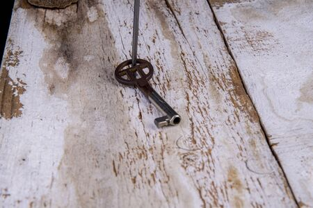 old key fixed on a board with a nail Imagens