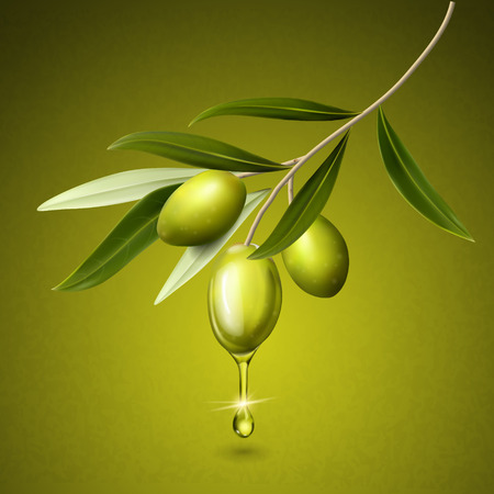 olive fruits and leaves on a branch, isolated green background 3d illustration Illustration