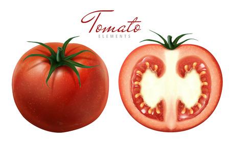 two tomatoes illustration, one sliced, white background 3d illustration