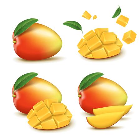 Fresh mango design elements, four different styles of fresh fruit in 3d illustration