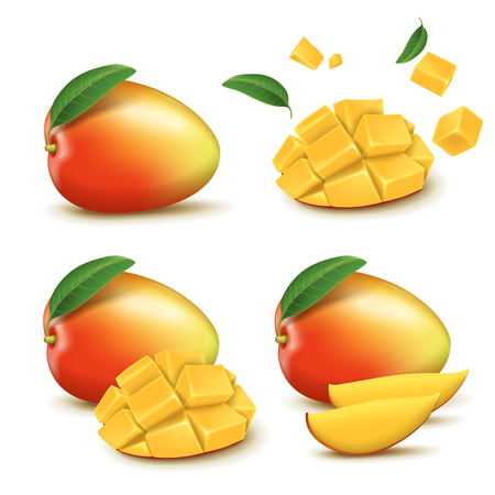 Fresh mango design elements, four different styles of fresh fruit in 3d illustration