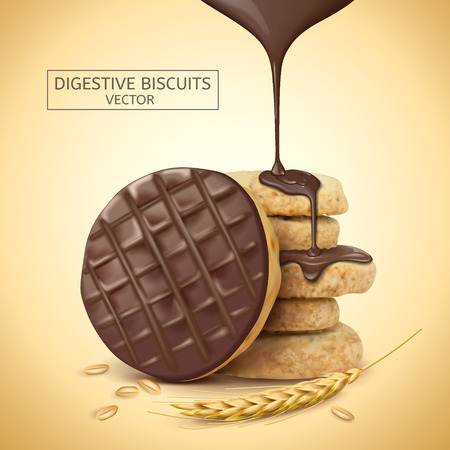 Chocolate digestive biscuits element, chocolate sauce dripping from top with its ingredients, 3d illustration Çizim
