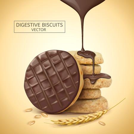 Chocolate digestivo galletas elemento, salsa de chocolate goteo de la parte superior con sus ingredientes, ilustración 3d