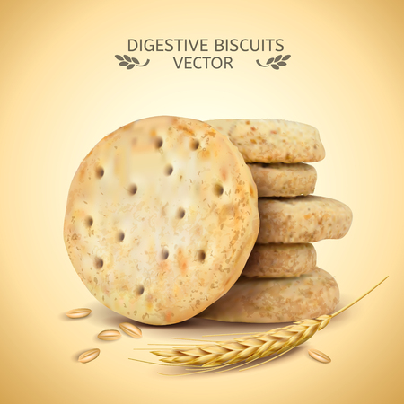 Digestive biscuits element, close up look at cookies and wheat in 3d illustration