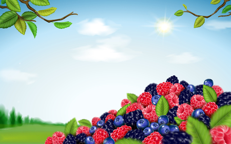 Fresh fruit on green field Illustration