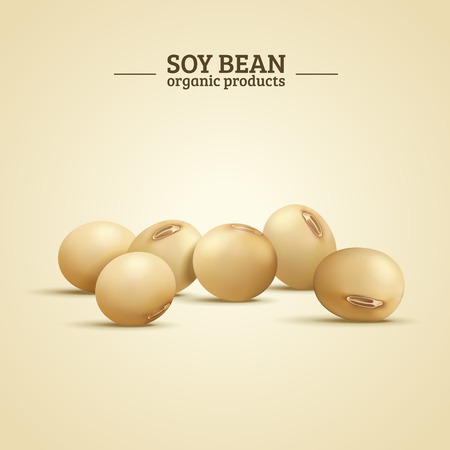 Soy bean elements, organic and natural food in 3d illustration