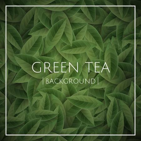 Green tea leaves background in 3d illustration, nature decorative wallpaper