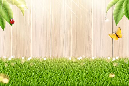 Garden grass and fence background in 3d illustration