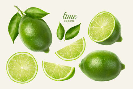 3d illustration of fresh lime set, with various view of whole lime fruit, halves and slices, isolated on light yellow background
