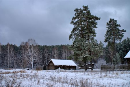 the outskirts of a village with snow pine trees photo