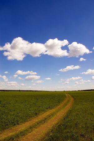 earth road: Nuvoloso cielo e la terra su strada attraverso il prato