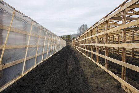 look between greenhouses in the field