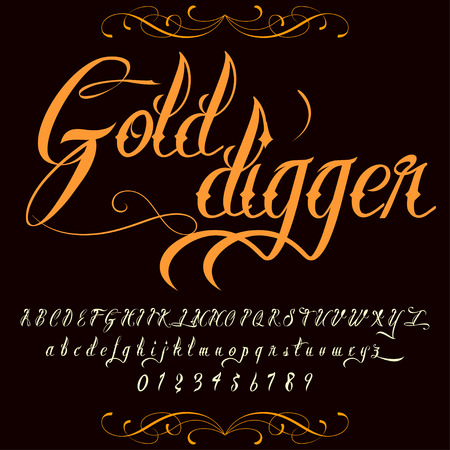 Script Font Typeface  Gold digger vintage script font Vector typeface for labels and any type designs