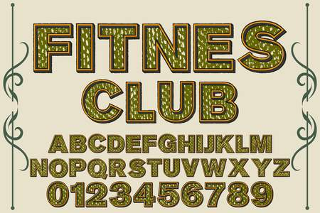 vintage font alphabet handcrafted vector named fitnes club
