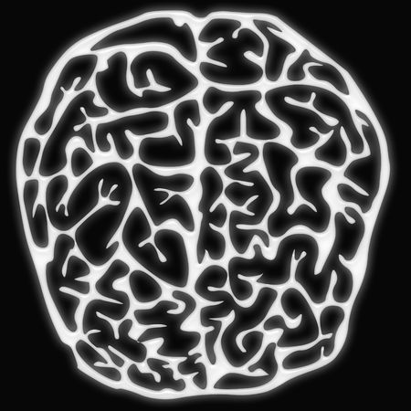 the human brain isolated on black Stock Photo