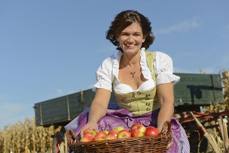 non urban 1: Mature woman with basket full of apples in field, smiling, Bavaria, Germany LANG_EVOIMAGES