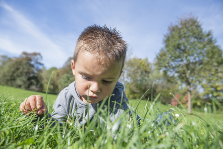 feld: Small boy grass meadow concentration serious LANG_EVOIMAGES