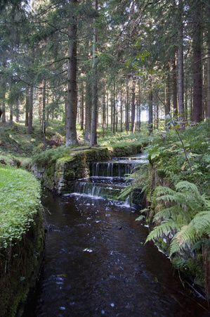 dikes: View of Dyke ditch at Harz National Park, Germany