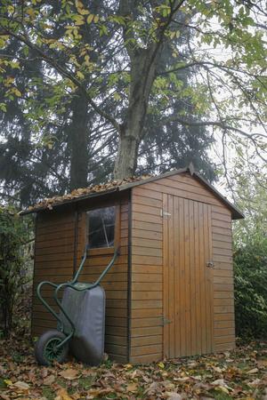 slovenly: Garden shed wheelbarrow autumn wooden