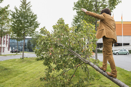 Businessman rear view climbing fallen tree suit