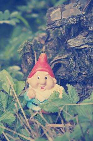 Garden gnome in lawn, Bavaria, Germany