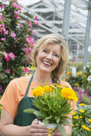 looking for job: Female shop assistant holding yellow flower plant in garden centre, Augsburg, Bavaria, Germany LANG_EVOIMAGES