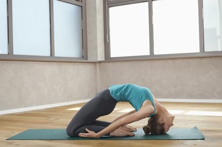 plainness: Woman in fitness studio spine back exercise