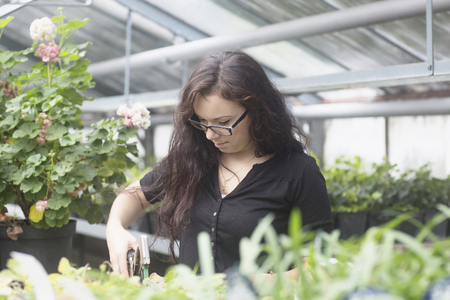 freiburg: Young woman working in a garden, Freiburg im Breisgau, Baden-Württemberg, Germany LANG_EVOIMAGES