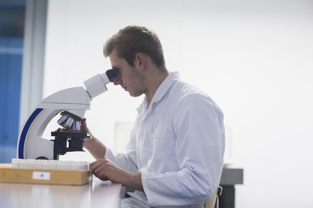 freiburg: Young male scientist looking through microscope in lecture room, Freiburg Im Breisgau, Baden-Württemberg, Germany