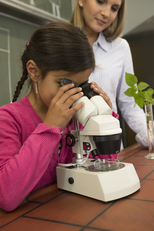 study group: School girl with teacher looking through a microscope, Fürstenfeldbruck, Bavaria, Germany