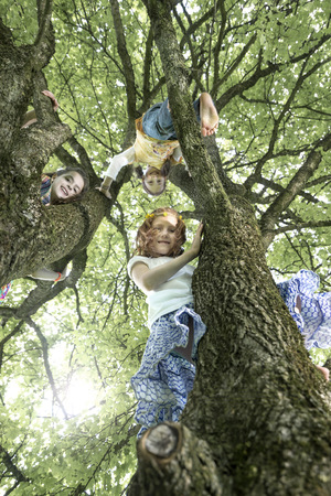 about age: Girls climbing on tree, Munich, Bavaria, Germany LANG_EVOIMAGES