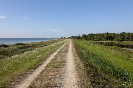 vanishing point: Dirt road passing through landscape at seashore, Schleswig-Holstein, Germany