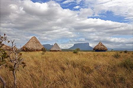 table mountain national park: Grass huts in a village, Canaima National Park, Venezuela