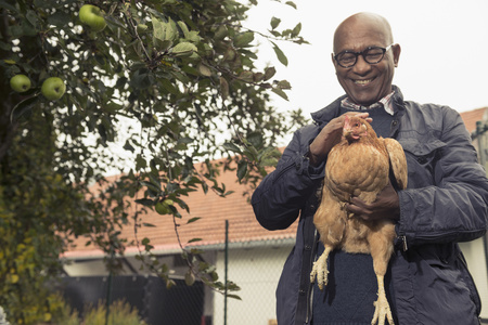 german ethnicity: Black man stroking a chicken bird and smiling in farm, Bavaria, Germany