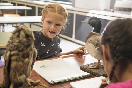 german ethnicity: Schoolgirls making animals sketch on their sketch pads in biology class, Fürstenfeldbruck, Bavaria, Germany