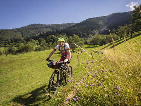 Mountain biker riding on a single trail in the southern black forest LANG_EVOIMAGES