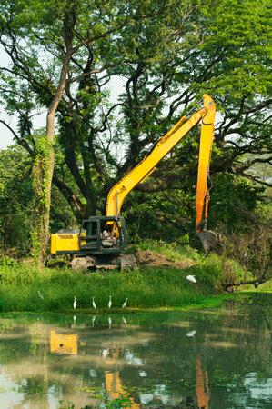 damaging: Destruction of forest, deforestation and damaging environment
