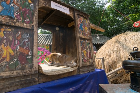 palanquin: PINGLA, WEST BENGAL , INDIA - NOVEMBER 16TH 2014 : A street dog resting inside Palki Palanquin, Colourful handicraft , which is being prepared for sale in Pingla village, India.