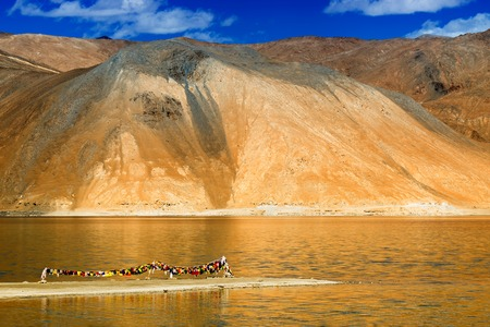 Mountains and Pangong tso (Lake). It is huge lake in Ladakh, with snow peaks and blue sky in background, it extends from India to Tibet. Leh, Ladakh, Jammu and Kashmir, India Stock Photo