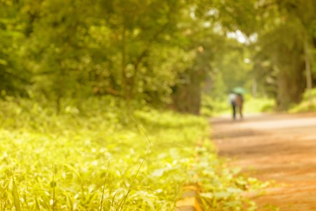 Couple romantique marchant et disparaissant dans la nature, stock image conceptuelle, Kolkata, Bengale occidental, Inde
