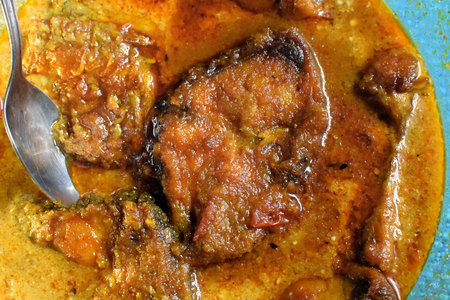 Rohu fish (labeo rohita) kalia - a spicy delicious Indian Bengalis favourite fish dish. It is widely available in south east Asian countries including eastern India, Bangladesh, Nepal, Myanmar and Pakistan.