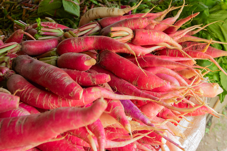 Fresh green vegetables , carrots , agricultural products of Sikkim , India