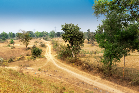 A village road in Rural India , Baranti village - West Bengal, India