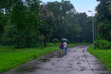 Romantic couple with one blue umbrella walking down the road inside in nature, conceptual stock image of rainy season, Kolkata, West Bengal. Monsoon of India. Male holding females back.