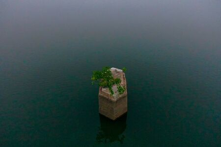 A pillar with tree on backwaters of Kerala, India - backwaters are a network of brackish lagoons and lakes lying parallel to the Arabian Sea coast in southern India. Dark water background. 스톡 콘텐츠