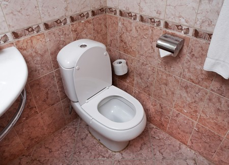 Modern bathroom part with white lavatory pan and toilet paper photo
