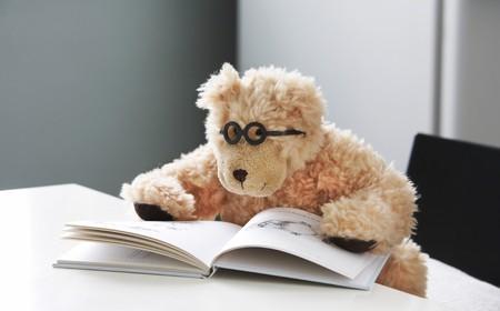 Teddy beer in glazen leest een boek met foto's Stockfoto